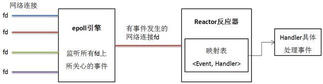 reactor_newsize